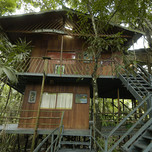 Ariau Amazon Towers Lodge, Tarzan House