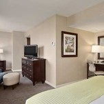 Junior Suite, Hilton Washington