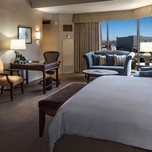 Executive Room, Hilton Anatole Dallas TX