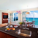 One Bedroom Suite,Trump International Miami