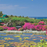 Grand-Hyatt-Bali-Ocean-Garden-View