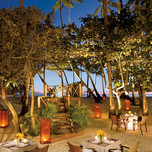 Jungle restaurant, Dreams La Romana