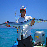 Giant Mexican Needlefish